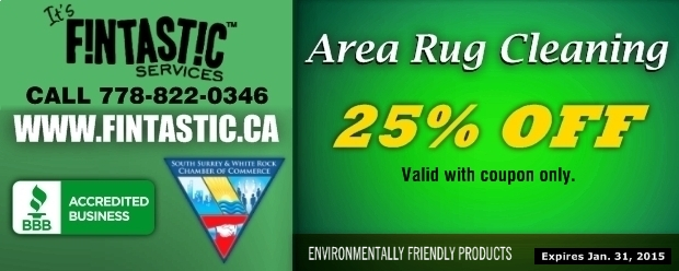 Area Rug Cleaning 25 Off At It S Fintastic Services